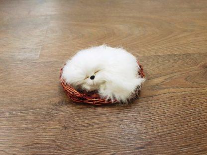Γατάκι διακοσμητικό σε πανέρι λευκό
